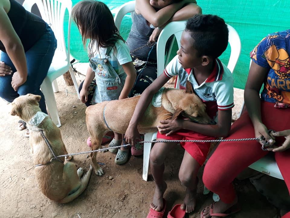 Niños llevando a sus perros a las jornadas de esterilización